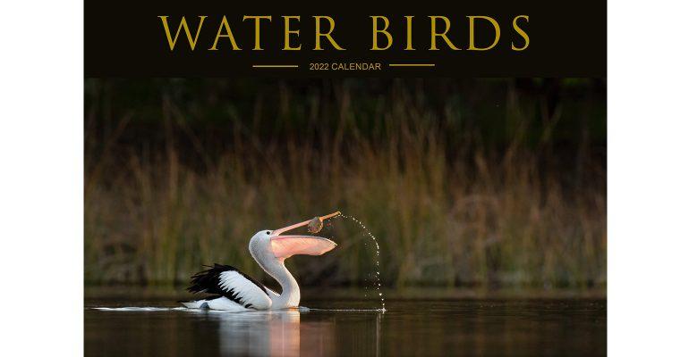 Water Birds 2022 Calendar
