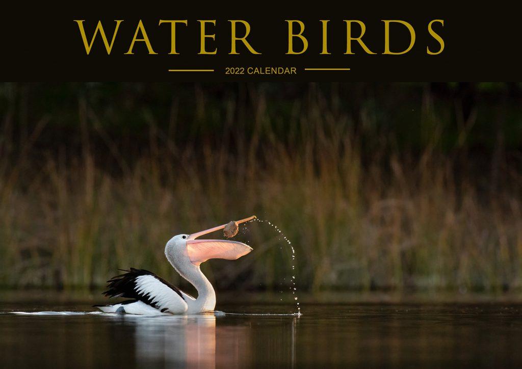 Waterbirds Calendar 2022